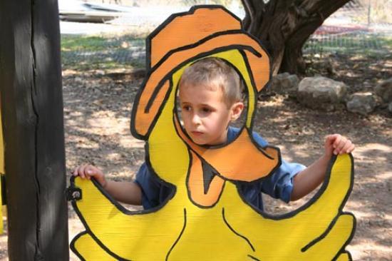 Luke the duck