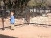 Luke in the petting corral