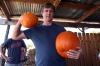 Andy\'s pumpkins