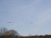 Kites in the sky 2