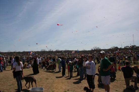 Kites in the sky 1