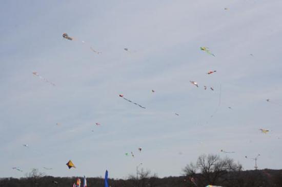 Kites in the sky 3
